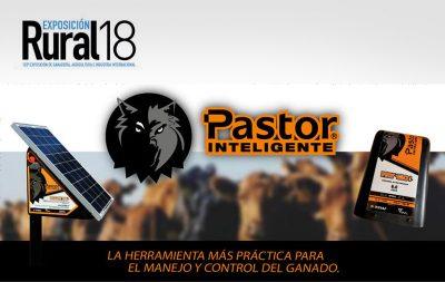 novedad-pastor-rural