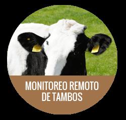 Monitoreo Remoto de Tambos